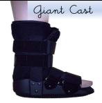111221_giantcast