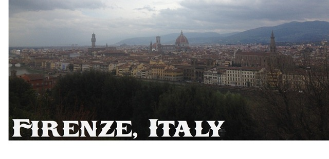 overview_florence