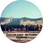 15_ColoradoAutumnLeaves